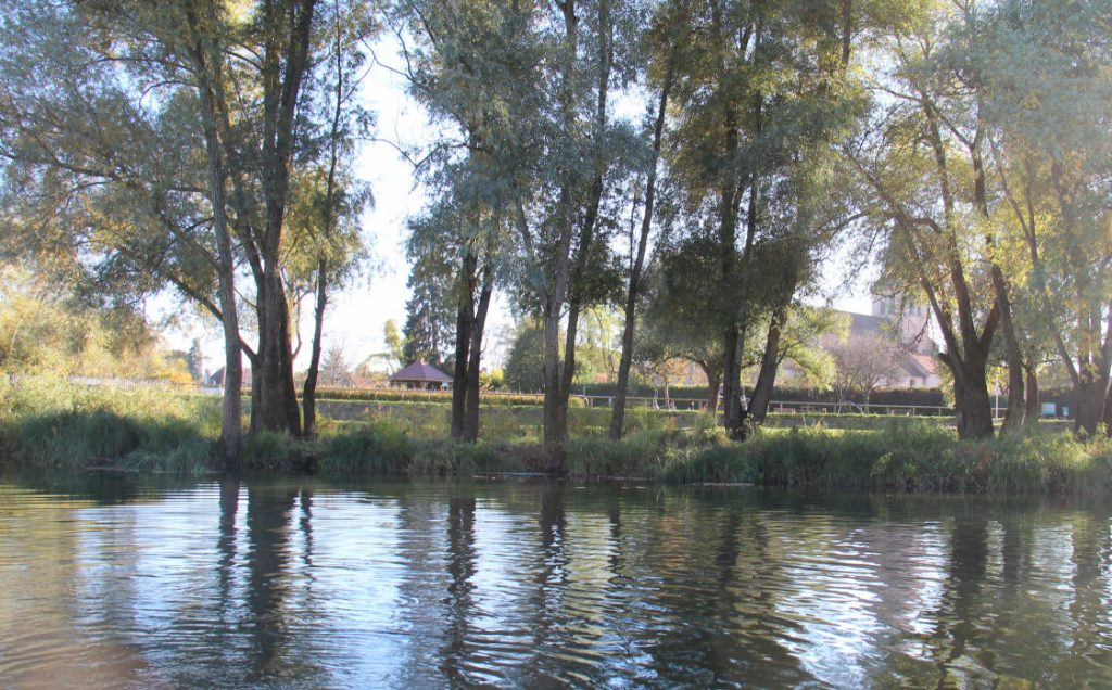 Le paquier vu de la Saône