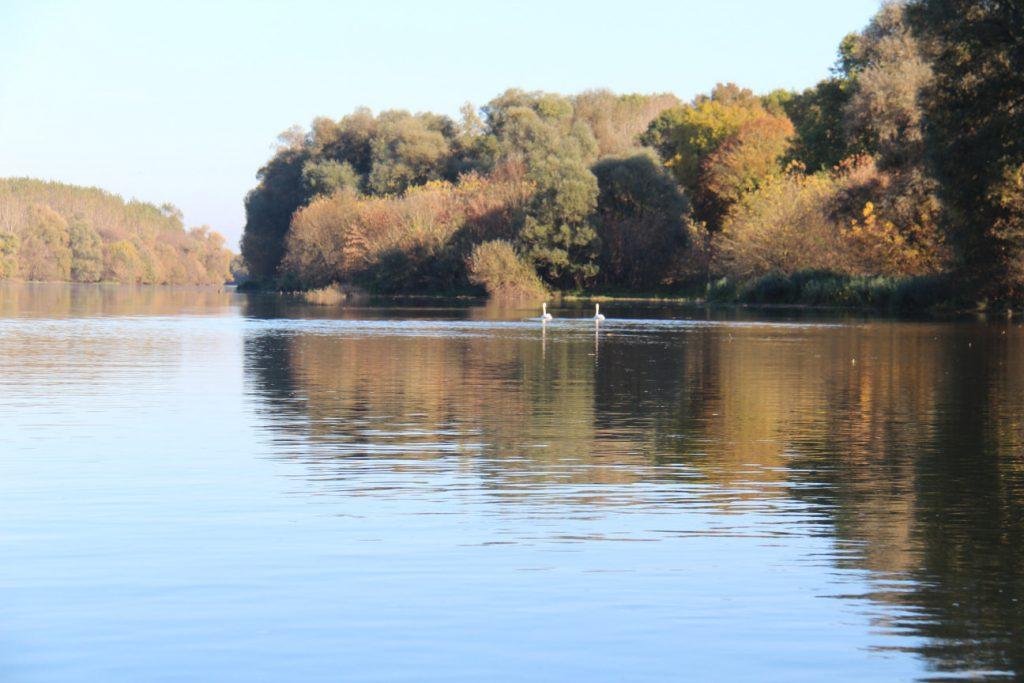 Balade sur la Saône