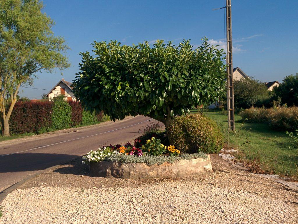 Entrée route de Charrey sur Saône