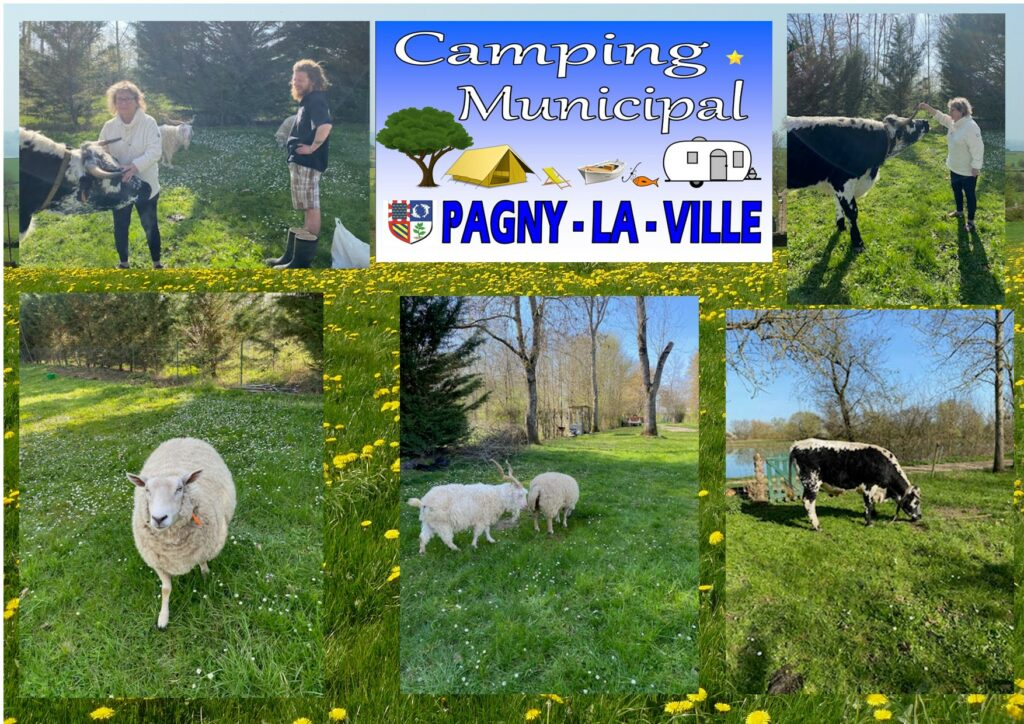 Au camping municipal Pagny la ville, randonneur insolite
